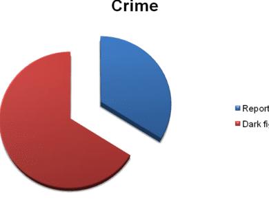 The Dark Figure of Crime. Crime Recording System