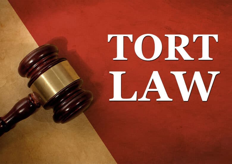 What Is Tort Law? Types, Example And More